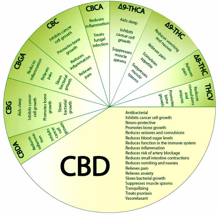a picture of a CBD Oil chart