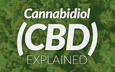 a picture of CBD e-liquid explained